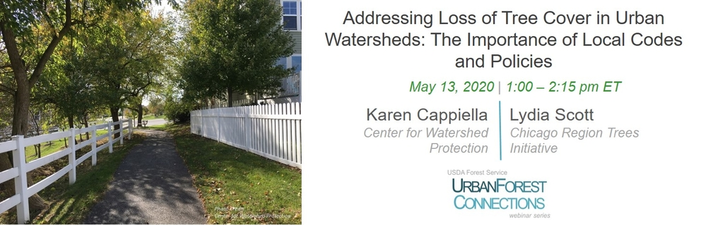 Addressing loss of tree cover in urban watersheds: The importance of local codes and policies