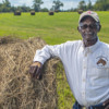 Roots of the Soil: Land Succession Issues among African American Farm Families