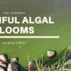 The Current Webinar: Harmful Algal Blooms
