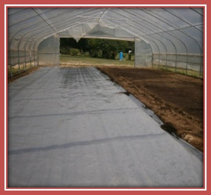 HOW TO SOLARIZE A TUNNEL/HOOP HOUSE