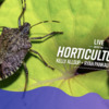 Spooky Bugs and More on LIVE with the Horticulturists