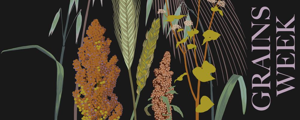 Grains Week!