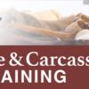 USDA Webinar: Livestock Mandatory Reporting, Part I: Utilizing Livestock Mandatory Reporting Live Cattle Reports
