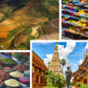 USDA/FAS Building back from the Trade Wars: Spotlight on Thailand and Vietnam